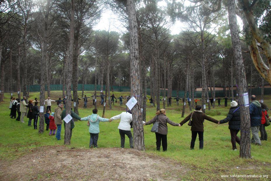 Abbracciamo la pineta di Santa Lucia, 13 dicembre 2009 – la galleria fotografica